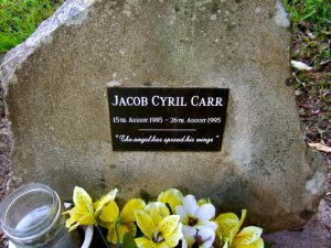 Carr, Jacob Cyril