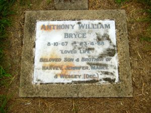 Bryce, Anthony William