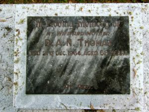 Thomas, Mrs. Dorothy Aice Nicklin